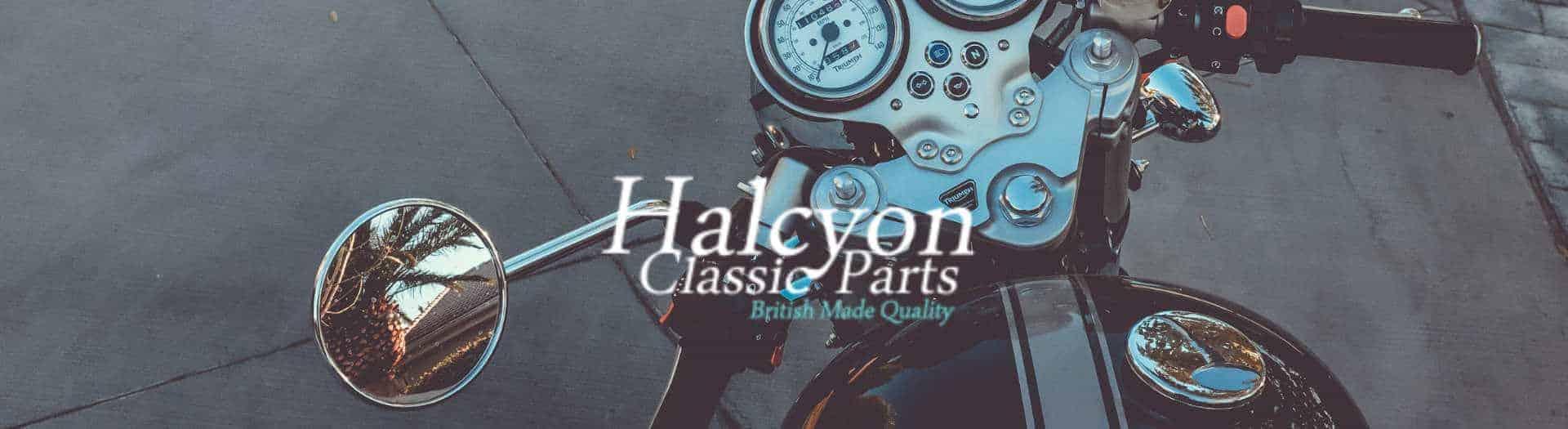 1920x525 Halcyon Goggles Logo header 1
