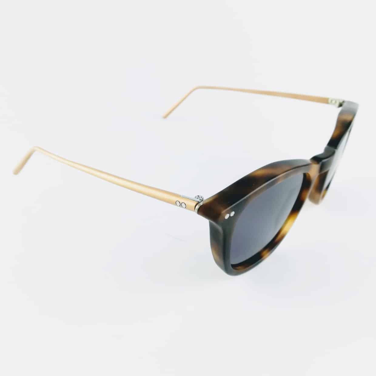 Banton Frameworks tortoise sunglasses on white background
