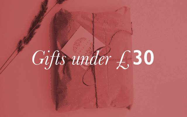460x400 Gifts under 30 lock up 1 1