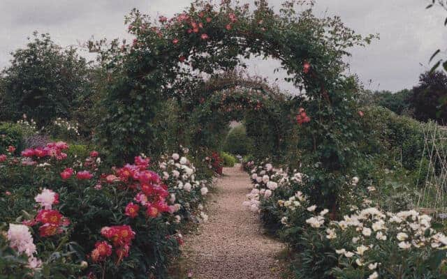 460x400 chelsea arch small