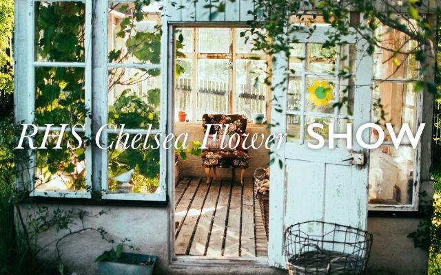 RHS Chelsea flower show lock up