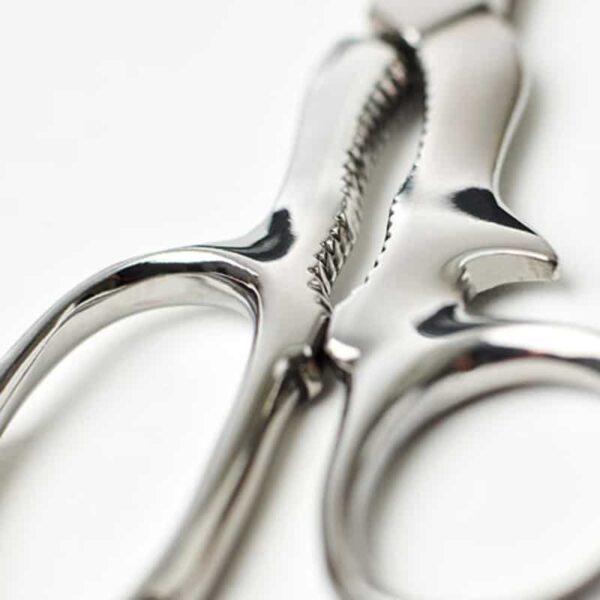 classic kitchen scissors close up