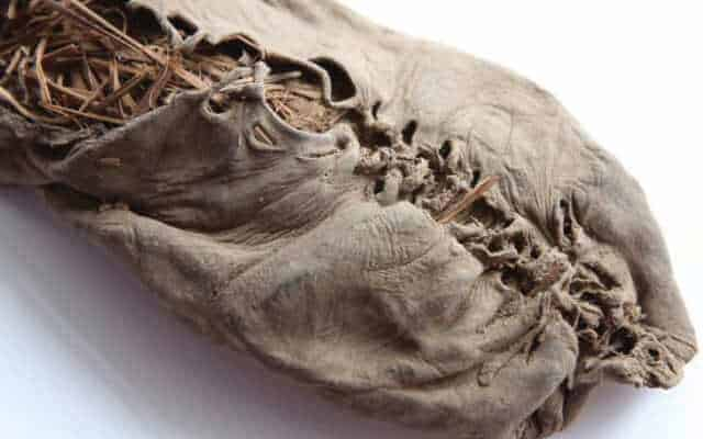 history of leather Oldest shoe