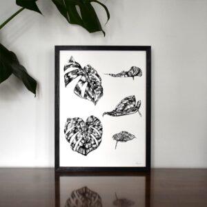 ruth emma fox illustration smallmonstera print 4 © all rights reserved 300x300 - New